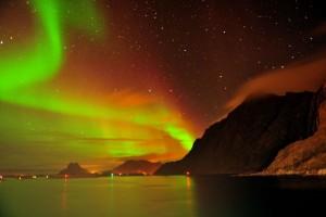 Starry Northern Light Night