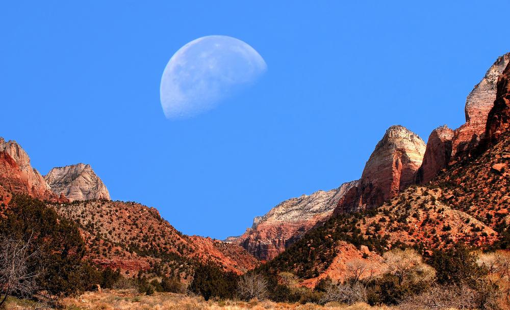 moon-usa