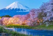 Japan April Travel