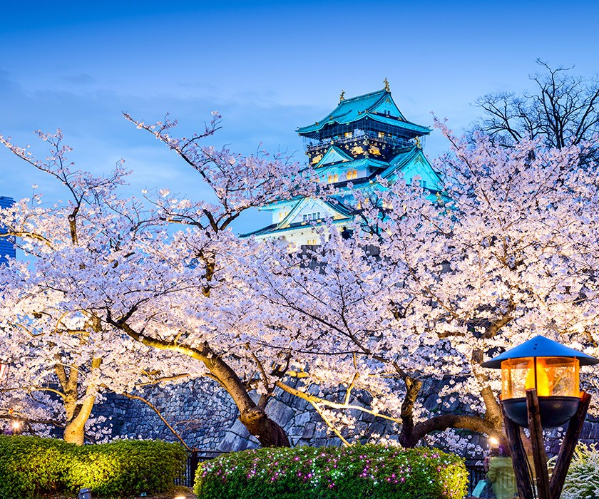 Japan Impressions Aspen Travel