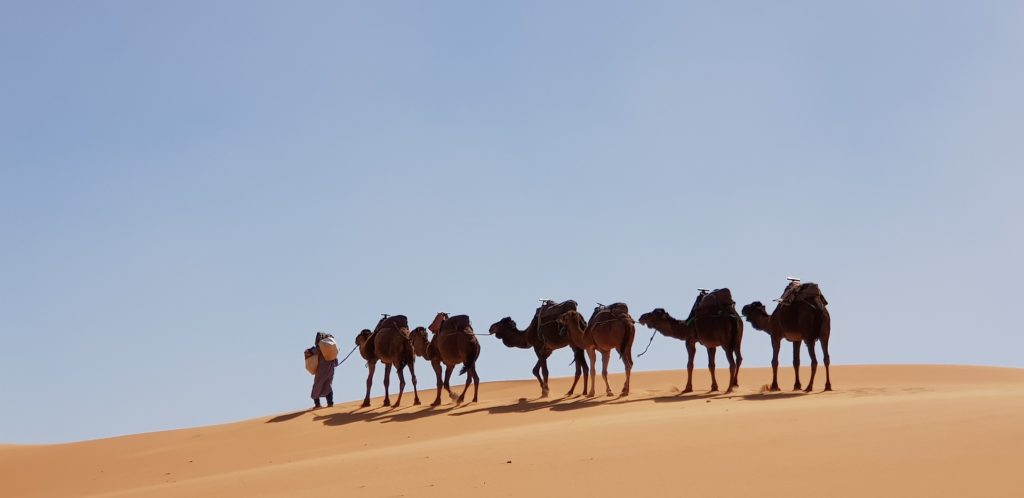 solo parent holidays to morocco