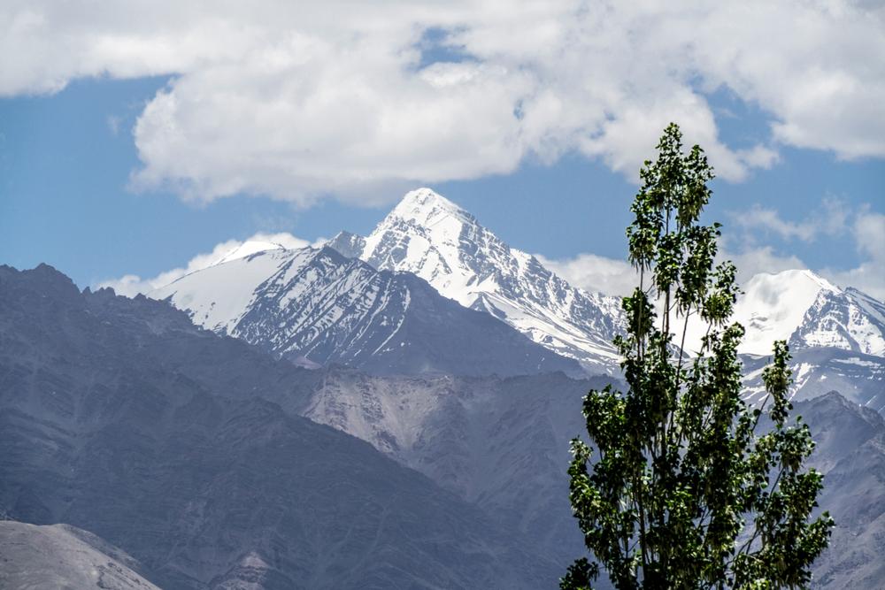 mountain climbing holidays stok kangri