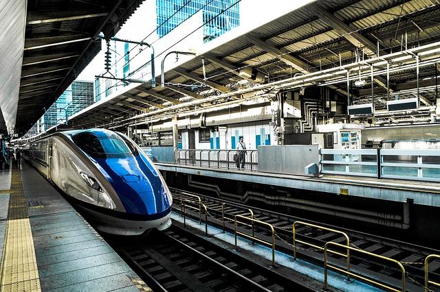 travel in tokyo -  haneko