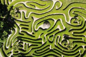 Maze Garden, Cornwall